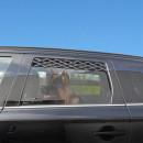 Lüftungsgitter für Autoscheibe